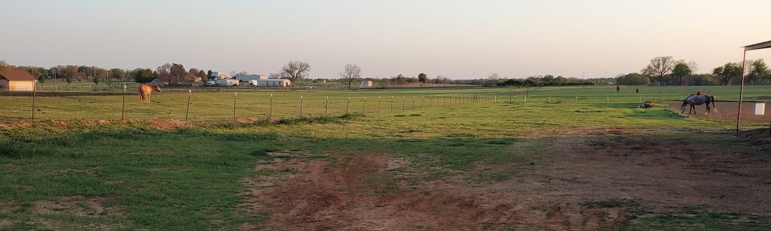Lila  S.'s Land