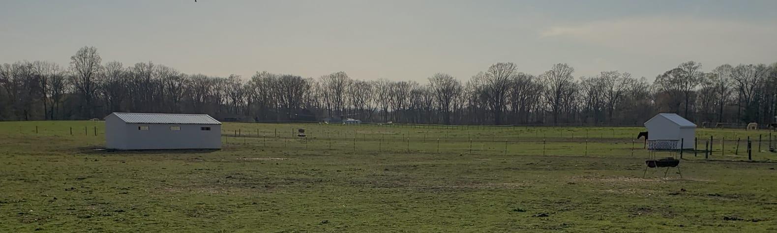 Taryn F.'s Land