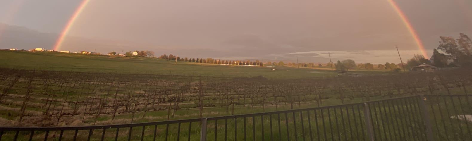Liberty Vines Camp