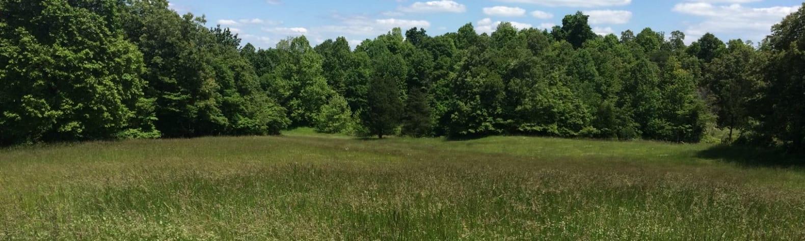 Heather G.'s Land
