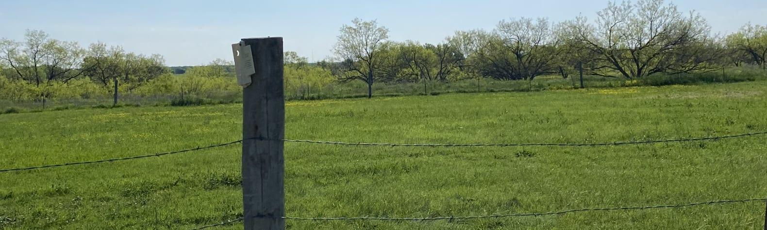 Sheryl W.'s Land