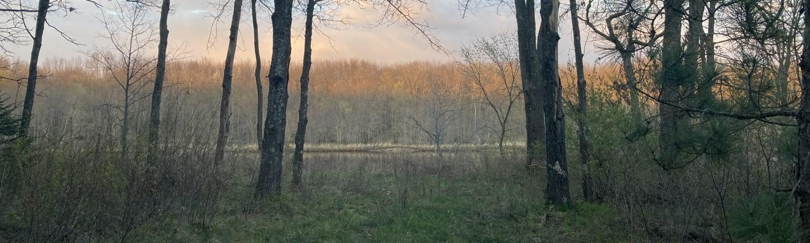 Mark M.'s Land