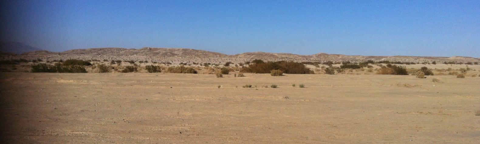 Mark D.'s Land