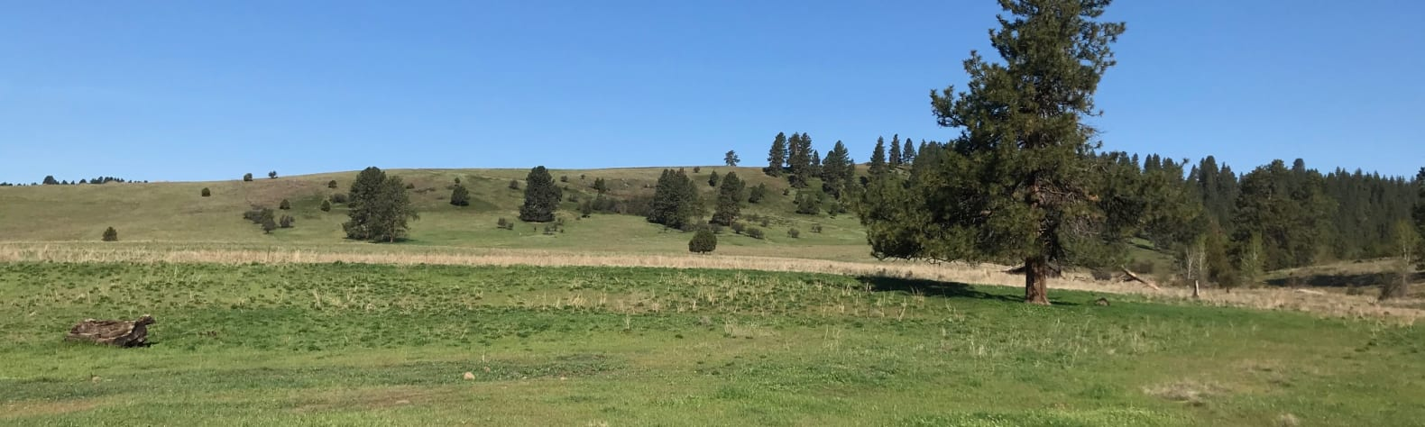 Sam H.'s Land