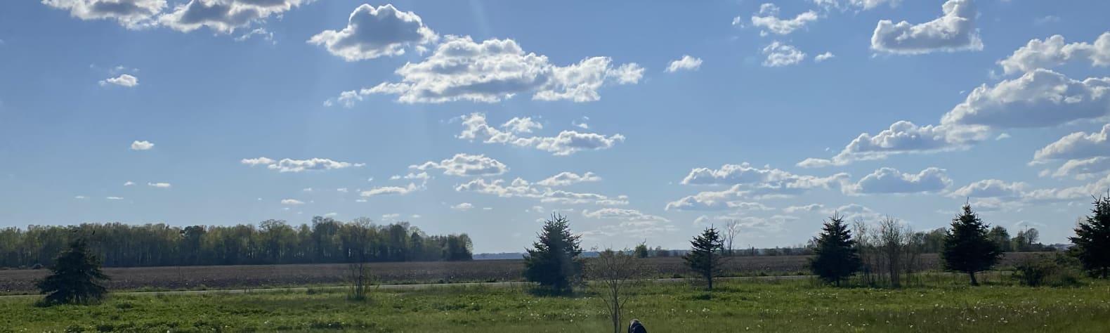 Andrea E.'s Land