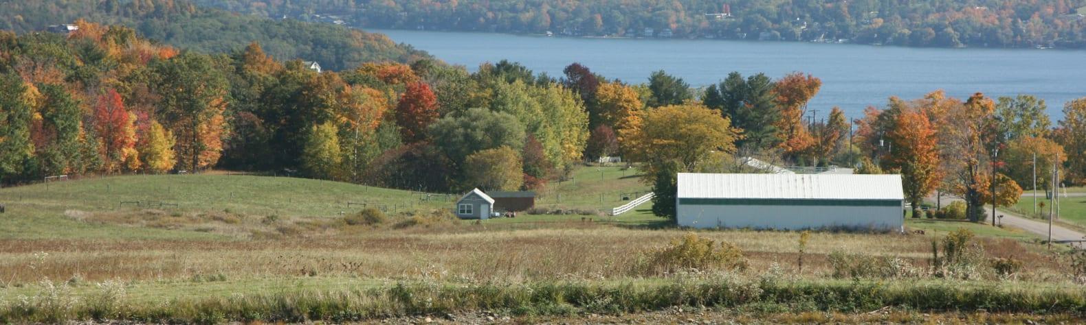 Simon S.'s Land