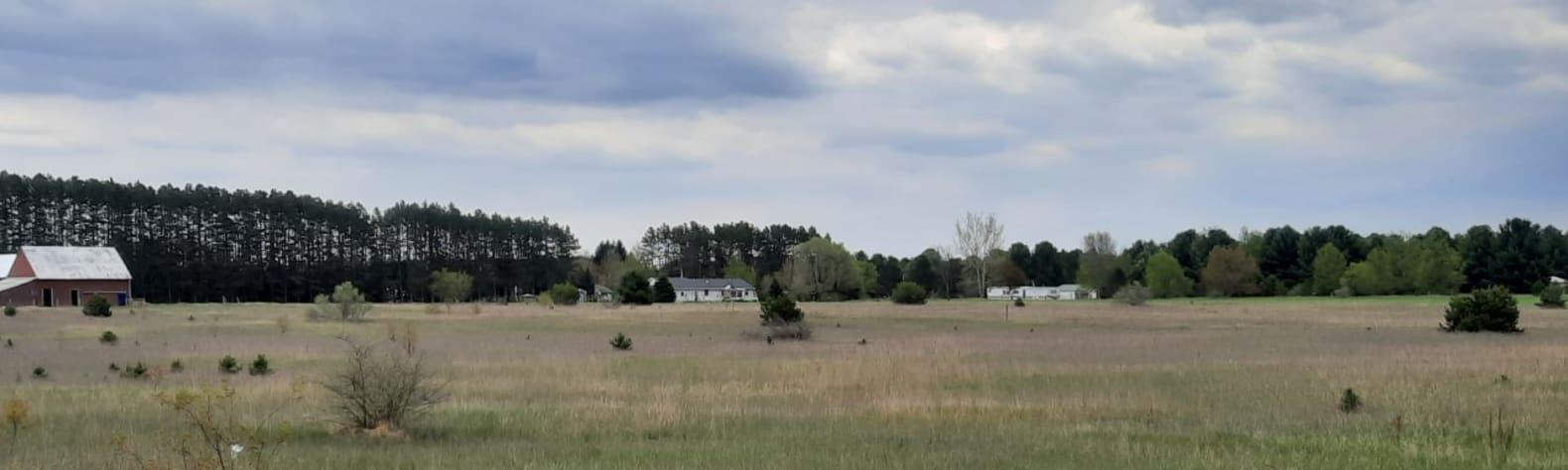 Roger S.'s Land
