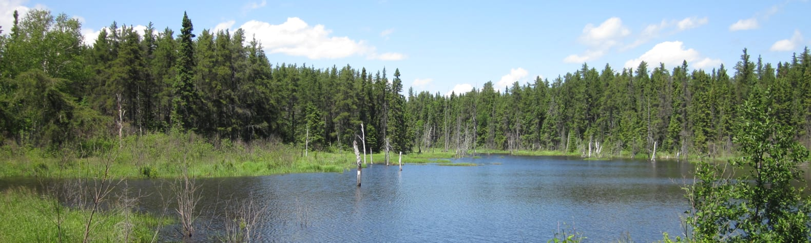 Pointe-Taillon National Park