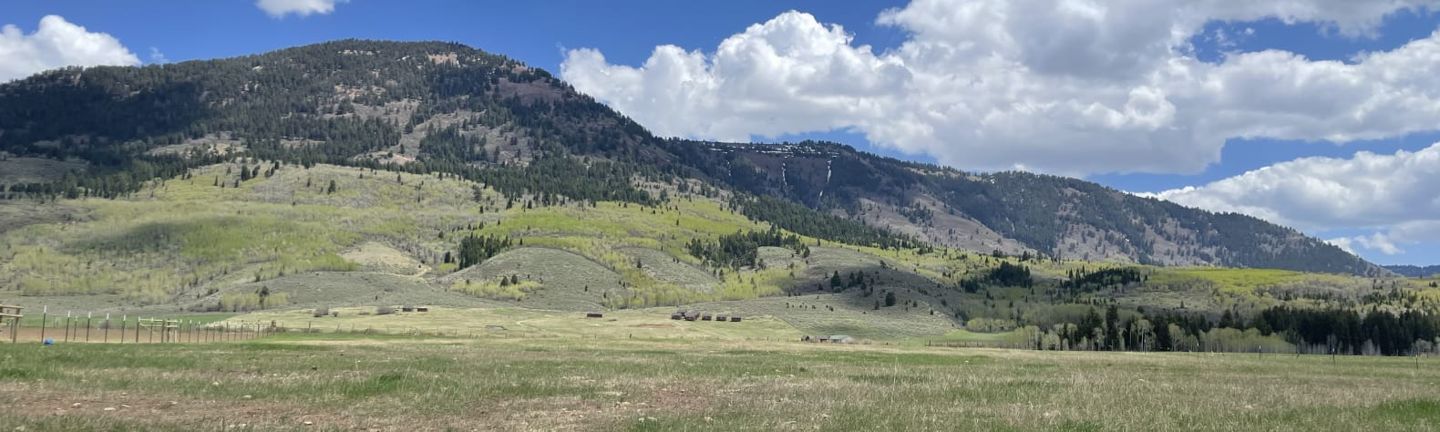 Smoot Bucking B Ranch