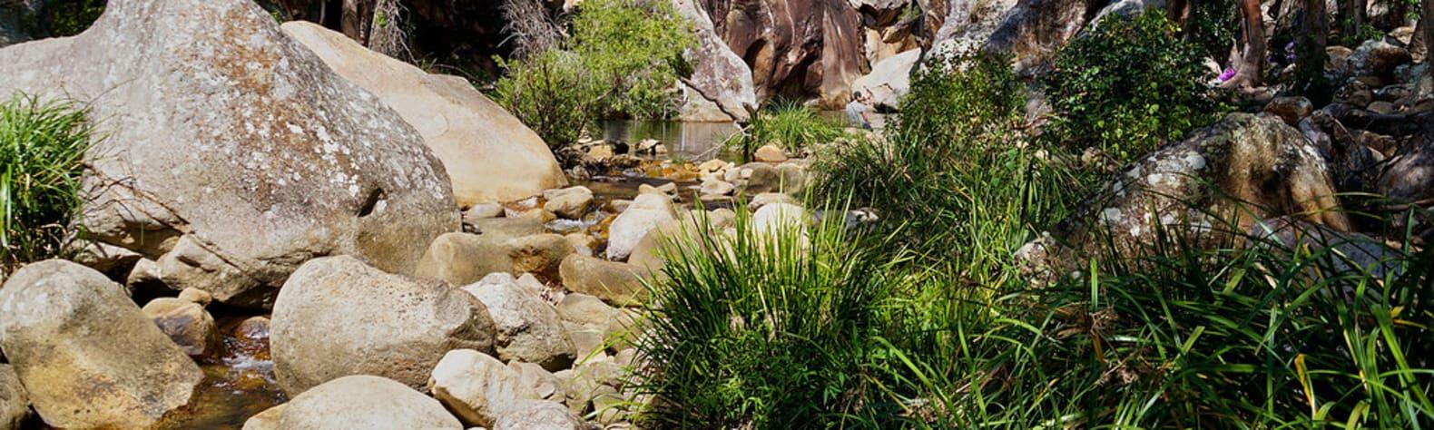 Mount Barney National Park