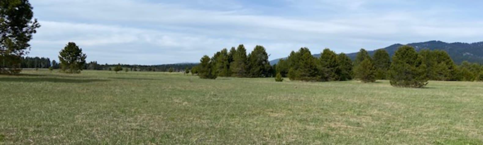 Brian S.'s Land