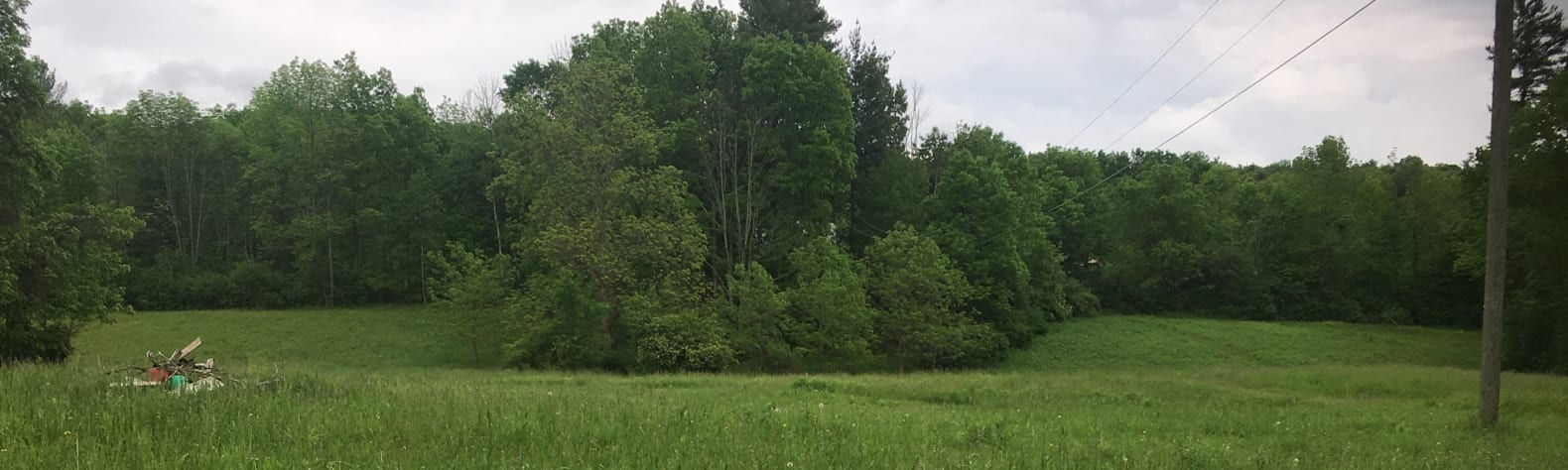 Christine  S.'s Land