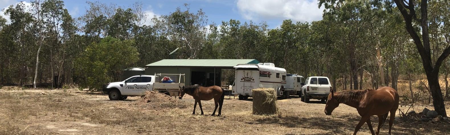 The Horse Garage