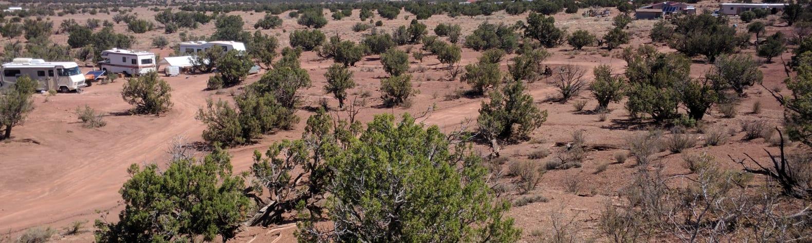 Bonnie K.'s Land