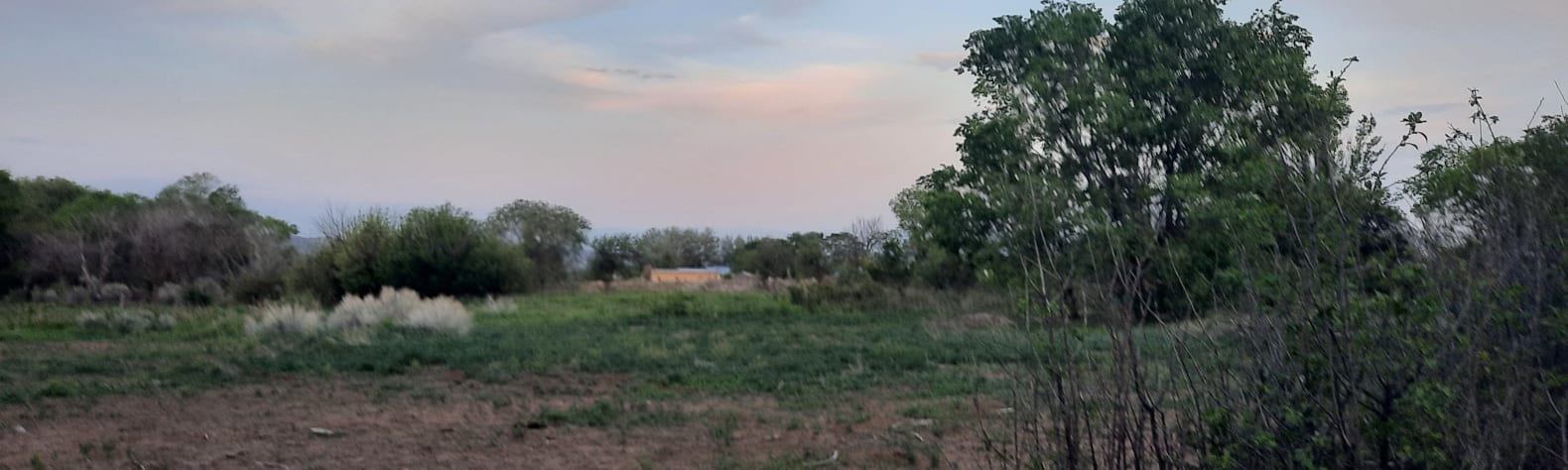 Fernando M.'s Land