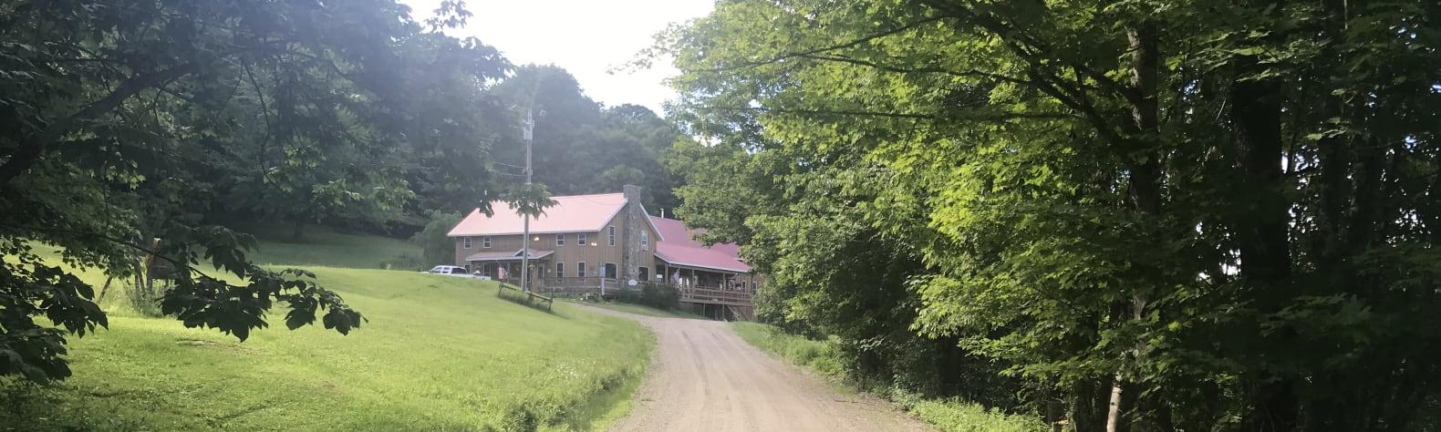 Terrie D.'s Land