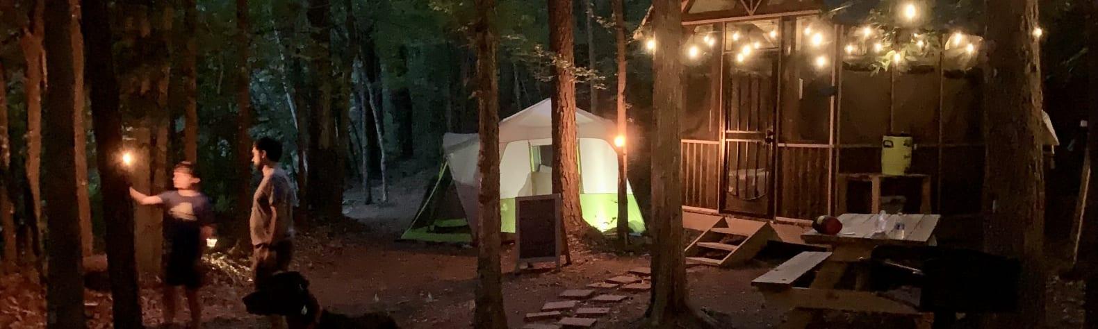 Tiny Cabin Pondside Retreat