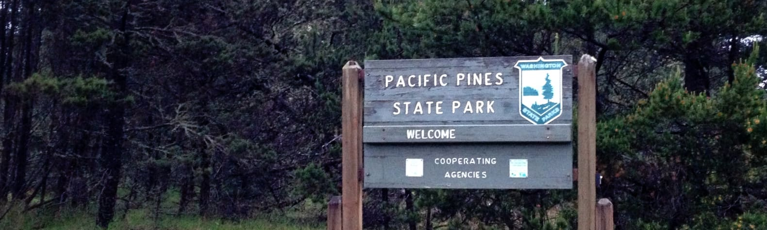 Pacific Pines State Park