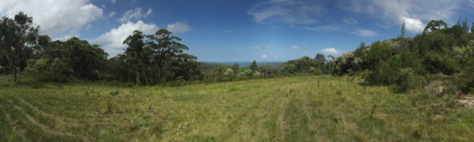 Somersby Fields