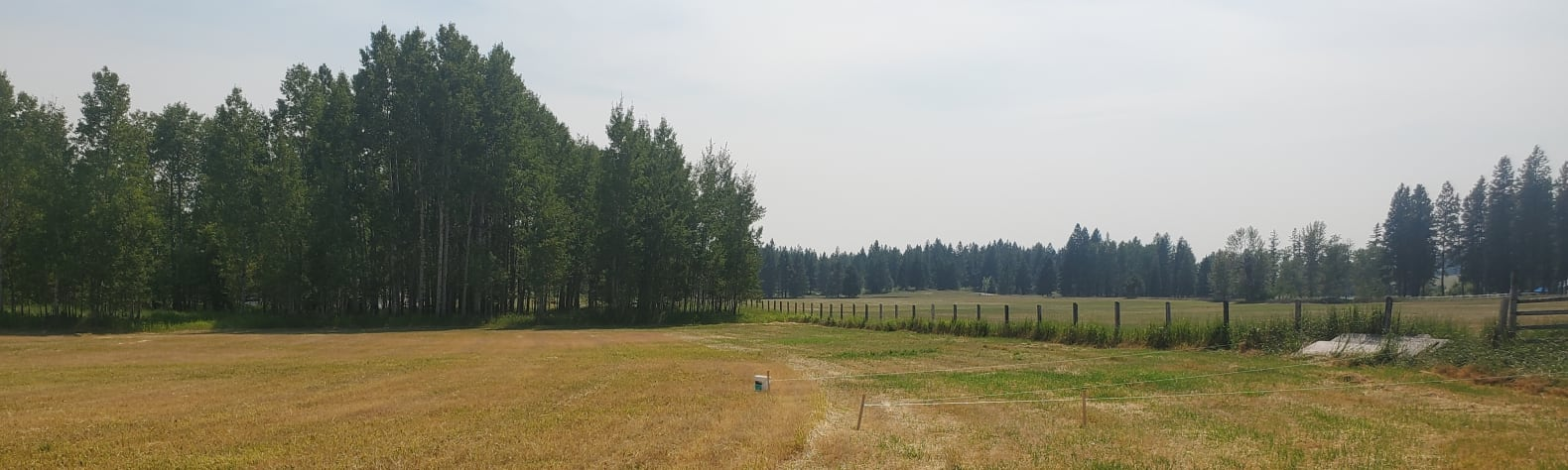 Michael F.'s Land