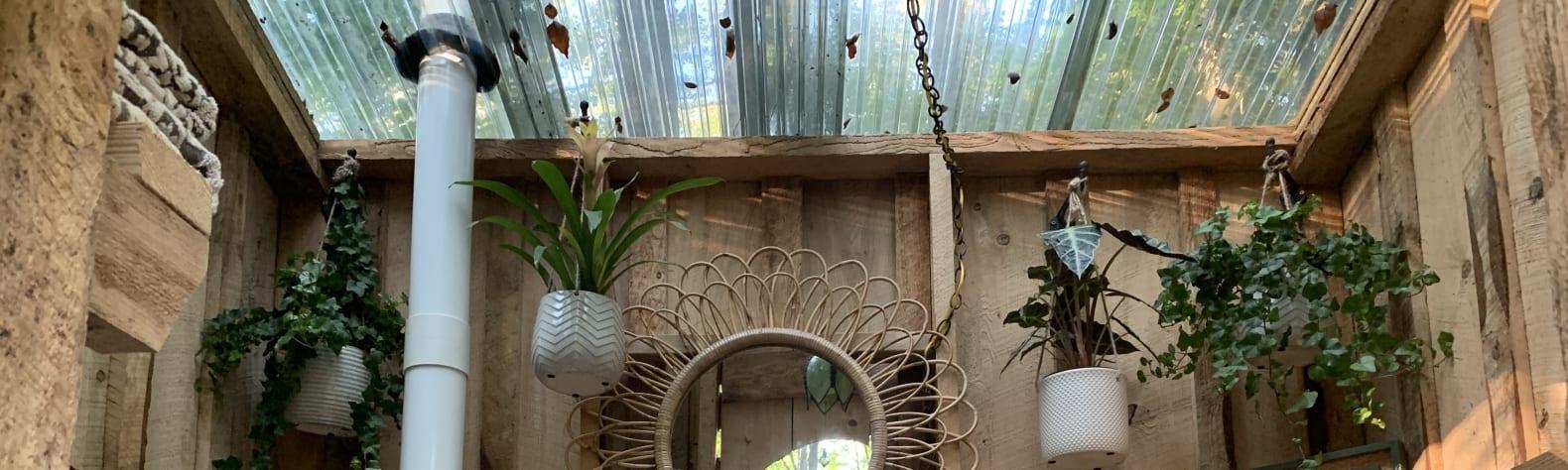 The Greenhouse Getaway