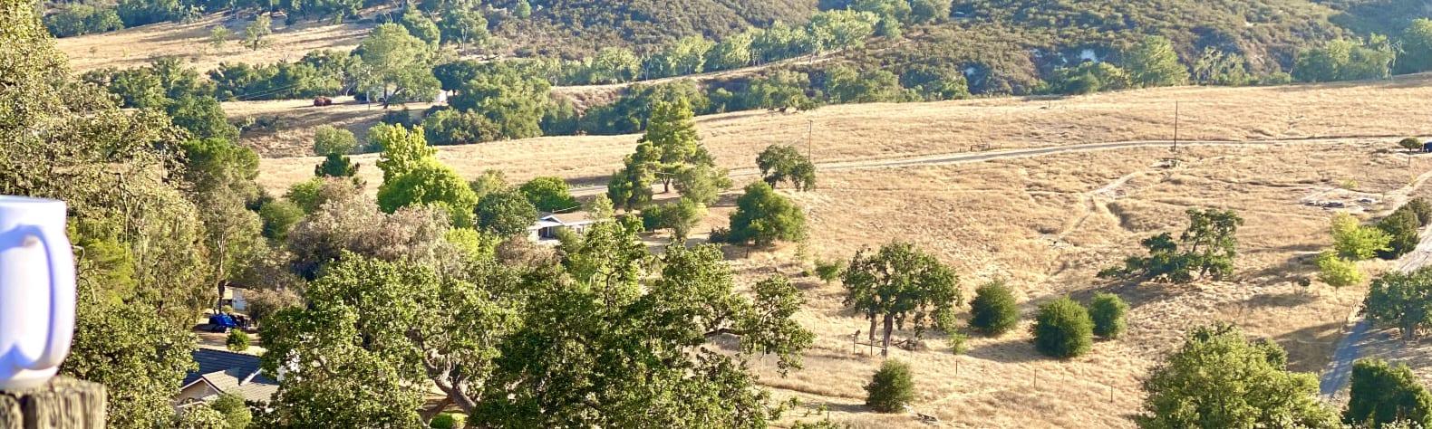 Sienna P.'s Land