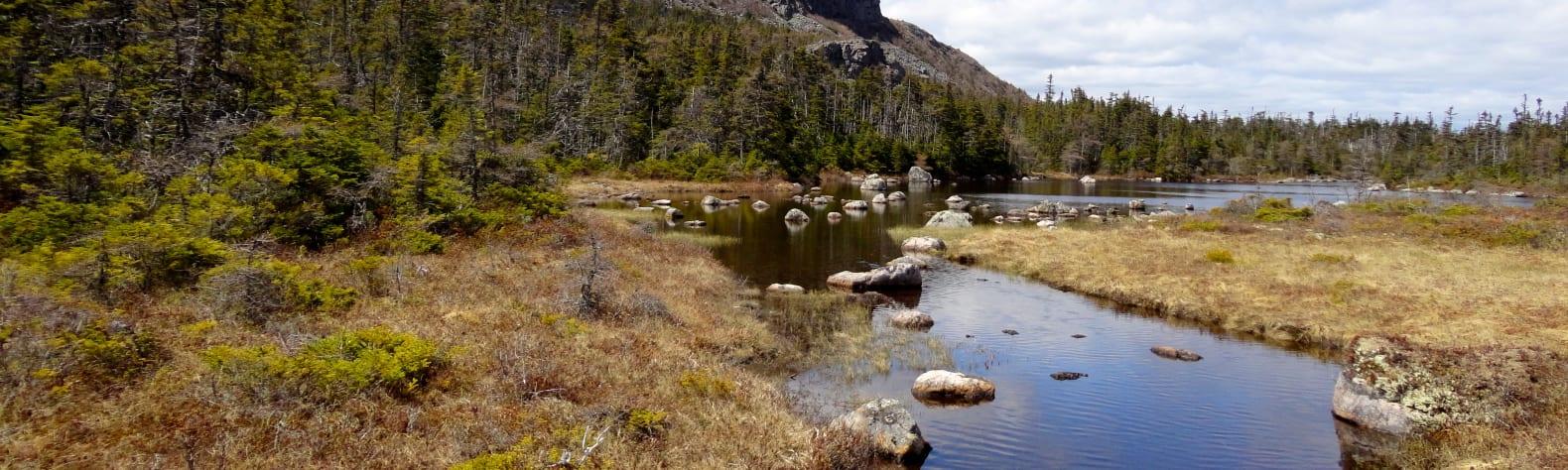 Butter Pot Provincial Park