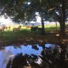 Kaiteri Farm