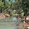 Conway Creek Camping