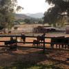 Katy's Farm