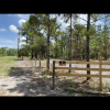 Pine forest ranch