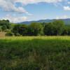 Elysian Fields at Middle Grove Farm