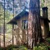 Historic Camping Cabin 36