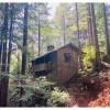 Historic Cabin Duplex 40 & 41