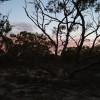 Rufus Whistler's Bushcamp 4wd selfc