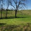 Quiet site near the woods