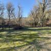 Elderberry camp