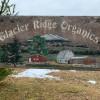 Glacier Ridge Organics
