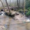 3 Creeks Camp and Nature Preserve .