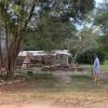 Eddie Murls Forest &Farmland