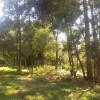 Mountain View Garden Camp