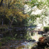 Mill Creek on Hudson