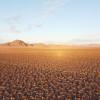 Desert Vineyard RV & Trailer