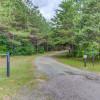 Plantation Pine Forest