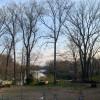 Bell Cove - Suburban Backyard
