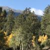 Rustic Creek Ranch - Hill Tops