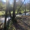Reems Creek Retreat