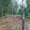 Blueberry fields campground