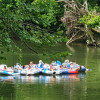 10 acres on the Clinch River,