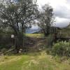 The Green Ravine & Trails in De Luz